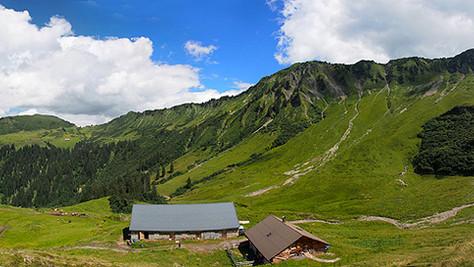 Obere Frutzalpe (1560 m)
