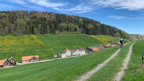 Ostschweizer Weintour