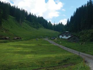Ostergunten Alpe