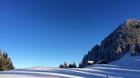 Bazora Alpe 1416m