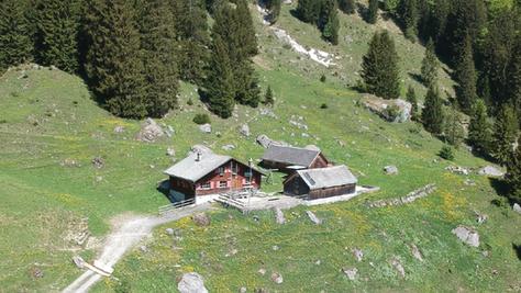 Hoher Kasten ü. Rohr Alp (1794 m)