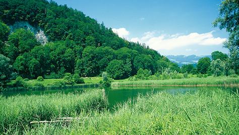 Naturschutzgeb. Wichenstein