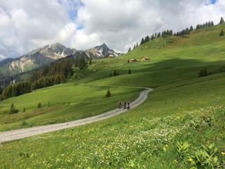 Zafernhorn (Bikevariante/2107 m)