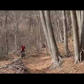 Columbo Trails