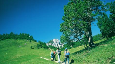 Schönberg (2104 m)