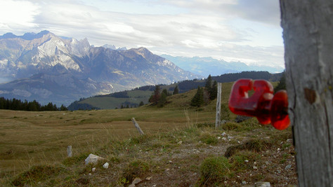 Alpe Tamons