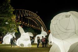Harbour Bridge - During Vivid Sydney