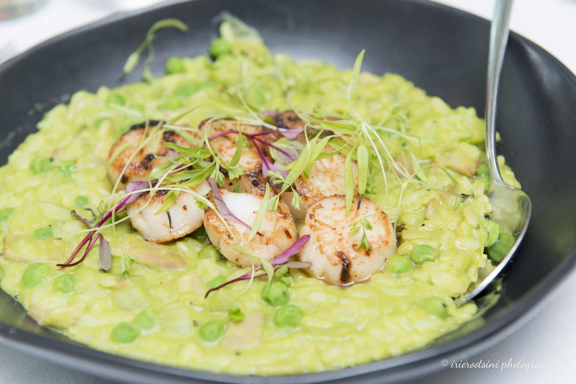 Scallop with Green Peas