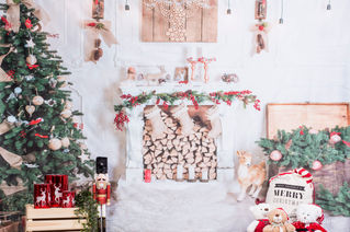 Christmas Backdrop - White Christmas