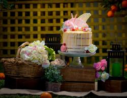 Theme Cake Photography