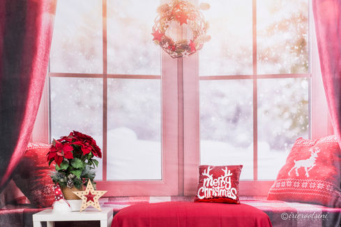 Christmas Backdrop - Snow by the Window