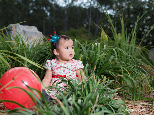 Kids-Photography-Sydney-24.jpg