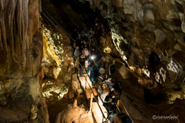 Jenolan Caves - Light Up the Walls