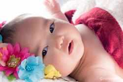 Portrait-Photographer-Western-Sydney-Newborn-Portrait
