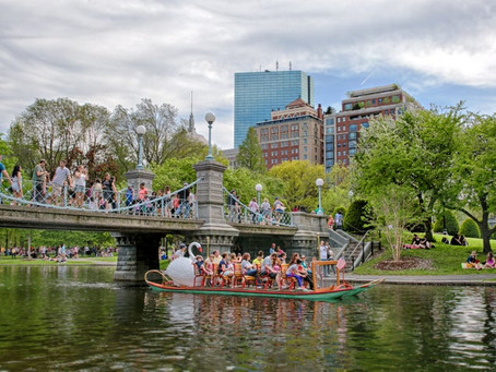 An Insider's Guide to Boston's Top 10 Attractions