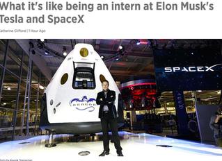Working for Elon Musk