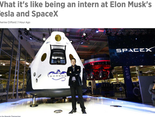 Working for Elon Musk