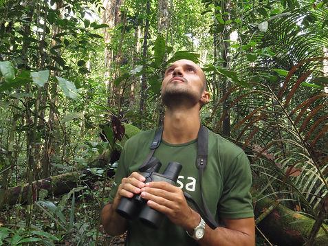 Tomaz Melo - Manaus Birding Tours