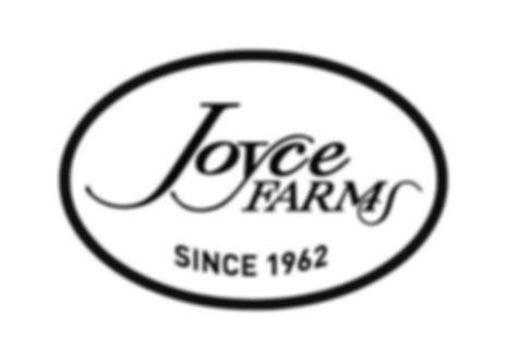 Joyce 3rd try.jpg