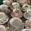 Thumbnail: Vintage Teacups