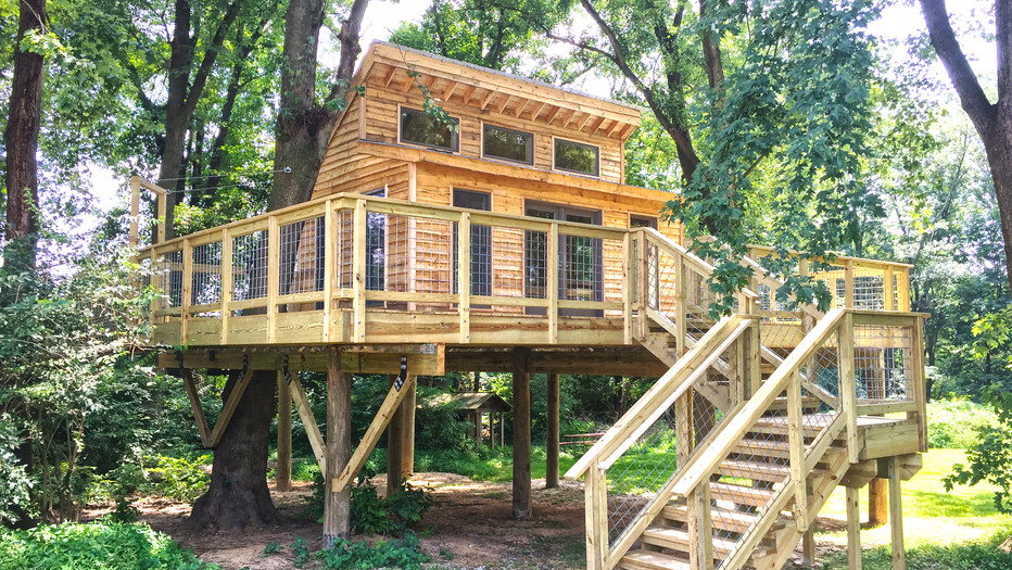 Private School Treehouse