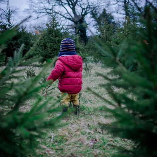 Christmas-Photography-Bath-Bristol-Wiltshire