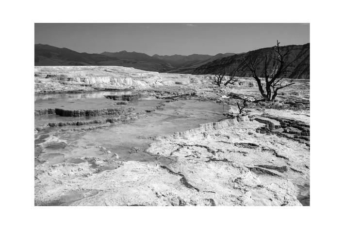 Mammoth hot springs .JPG