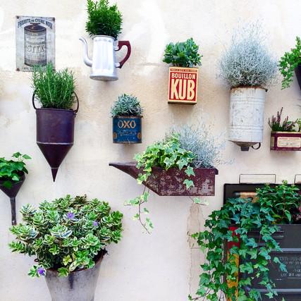 Green Wall, Saint-Rémy de Provence
