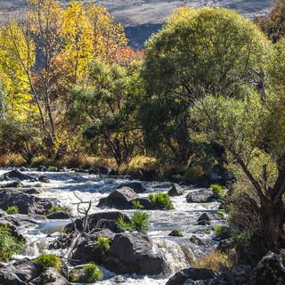 Быстрое течение Паравани Rapid stream of Paravani river