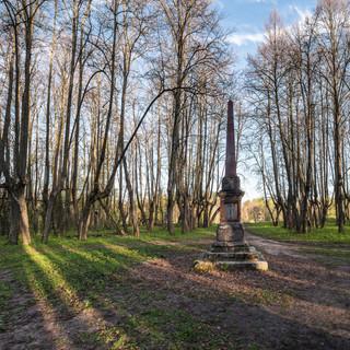 Остатки парка усадьбы Чернышевых в Яропольце Remains of the park of Tchernyshevs' Manor in Yaropolets