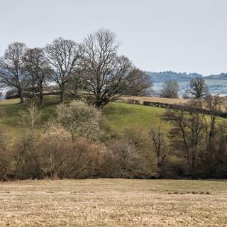 Весенний пейзаж, Килгурруг Spring countryside at Kilgwrrwg