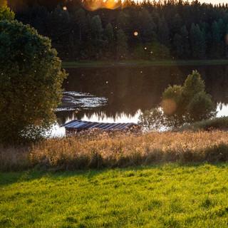 Солнечным вечером у Почозера, Архангельская область  In a sunny evening at Pochozero lake, Arklhangelsk region
