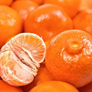 Мандариновая тема Tangerine theme
