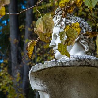 В парке в Архангельском In the park of Arkhangelskoye manor
