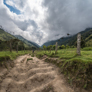 Тропа, ведущая по долине Кокора A footpath leading up into Cocora Valley