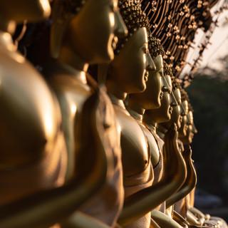 Золотые будды храма Сеема Малака на закате, Коломбо  Golden buddhas of Seema Malaka temple at sunset, Colombo