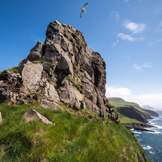 Чайка над скалой на западной оконечности острова Мичинес A seagull flies over a rocky gorge at the western tip of Mykines island