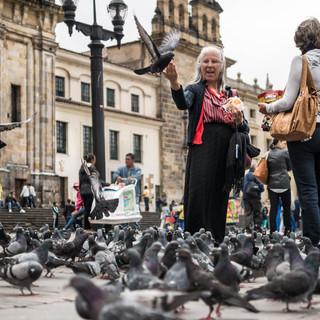 Кормление голубей, площадь Боливара, Богота Feeding pigeons, Plaza Bolívar, Bogotá
