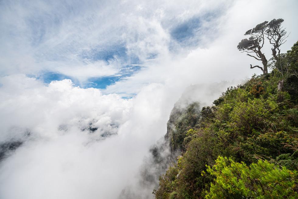 """Вид со скалы с названием """"Край света"""", национальный парк Хортонс-Плэйнз. Эта скала – почти километровый обрыв, здесь заканчивается горная часть острова и начинается равнина, тянущаяся на юг к Индийскому океану. В ясный день виден и сам океан, но в облачную погоду это место действительно производит ощущение """"края света"""".  A view from the 'World's End' cliff, Horton's Plains National Park. This cliff is an almost one kilometre high vertical precipice towards south, where Sri Lanka's hill country passes into southern plain lasting up to the Indian ocean. In good weather conditions you can see the ocean itself but as it is cloudy, the place has real feel of a 'world's end'."""