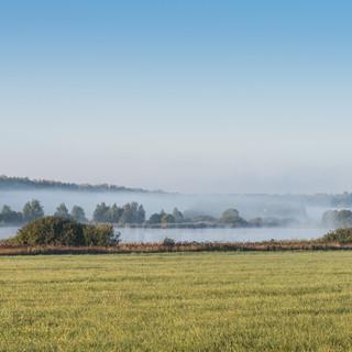 Туман над прудом ранним сентябрьским утром Fog hangs low over a pond in an early September morning