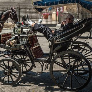 Кучер отдыхает в карете перед Театро Массимо в Палермо A coachman taking a rest in front of Teatro Massimo in Palermo