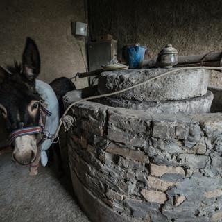 Ослик крутит жернова мельницы для перемалывания пигмента, используемого в производстве керамики, Гиждуван A donkey drives a traditional mill to grind tincture for ceramics decoration, Gijduvon