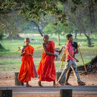 Юные монахи несут лотосы, Анурадхапура  Young monks with lotuses, Anuradhapura
