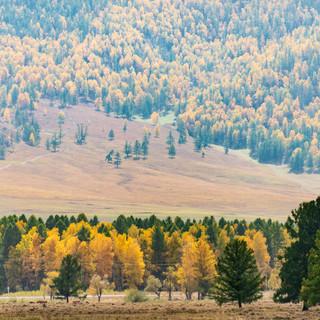 Каракольская долина Karakol Valley