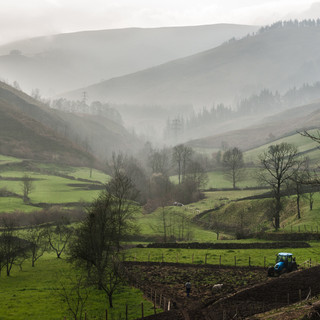 Весеннее утро в горах Кантабрии A spring morning in Cantabrian mountains
