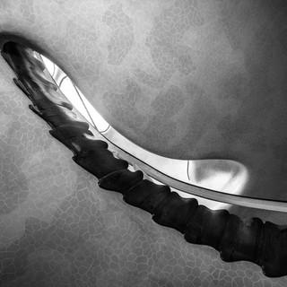Архитектурная геометрия Гауди: парадная лестница в доме Бальо  Gaudí's architectural geometry: the main stairway in Casa Batlló