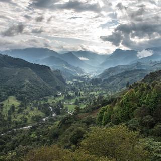 Вид вверх вдоль реки Киндио в направлении долины Кокора A view towards Cocora valley, up Quindío river