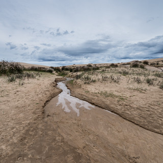 В дюнах Барра-де-Валисас: почти настоящая пустыня на берегу океана  In Barra de Valizas sand dunes: almost true desert on Atlantic coast
