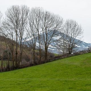 Весенний пейзаж в Кантабрии A spring Cantabrian landscape