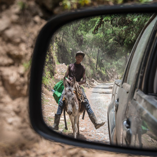Встреча на дороге, остров Санту-Антау  Road encounter, Santo Antão island